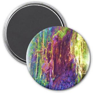 Arte de la foto del árbol caido imán redondo 7 cm