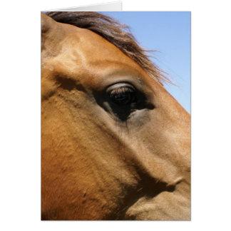 Arte de la fotografía de la cabeza de caballo tarjeta de felicitación