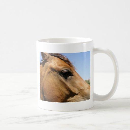 Arte de la fotografía de la cabeza de caballo taza