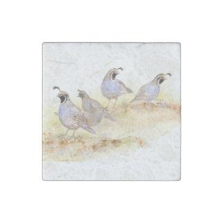 Arte de la naturaleza del pájaro de las codornices imán de piedra