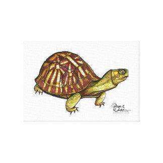 Arte de la pared de la tortuga