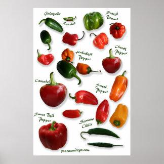 Arte de la pared de las variedades del chile posters