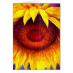 Arte de la pintura del girasol - multi tarjeta