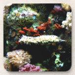 Arte de la planta del acuario posavasos