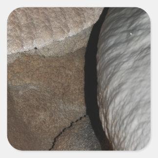 Arte de la roca de la cueva etiquetas