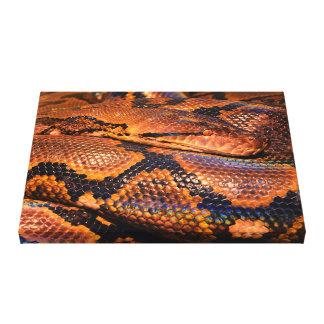 Arte de la serpiente - lona lona envuelta para galerías