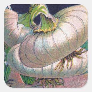 Arte de la verdura del paquete de la semilla de la pegatina cuadrada