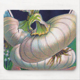 Arte de la verdura del paquete de la semilla de la tapete de ratón