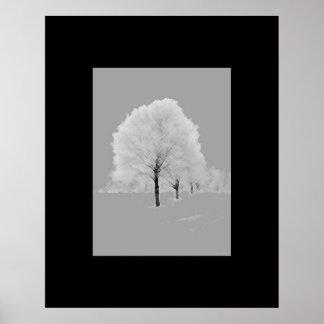 Arte de los árboles - enmarañados, negro y blanco  impresiones