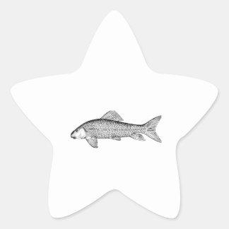 Arte de los pescados del lechón pegatina en forma de estrella