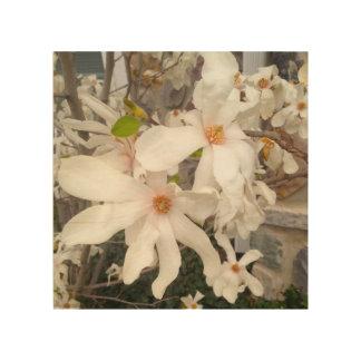 Arte de madera floral blanco cuadros de madera