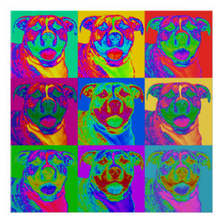 Arte de Op. Sys. Pitbull Póster