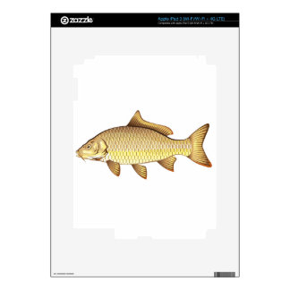 Arte de oro común del vector de la carpa iPad 3 pegatina skin