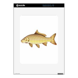 Arte de oro común del vector de la carpa iPad skin