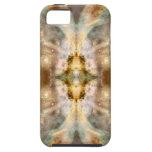 Arte de oro de lujo de ButterflySpace iPhone 5 Coberturas