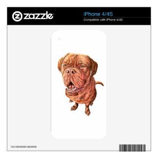 Arte del animal del dibujo del perro del mastín iPhone 4 calcomanía