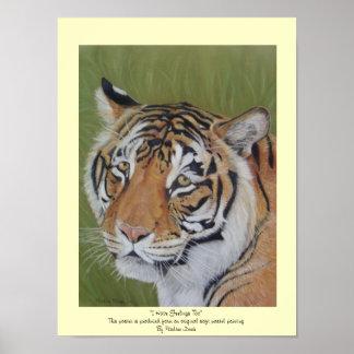 arte del animal del realista de la fauna del gato  poster
