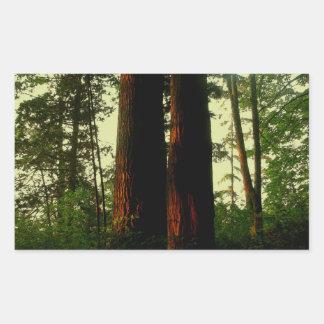 Arte del árbol rectangular pegatinas