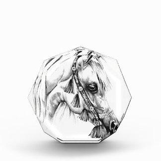 Arte del bosquejo del dibujo del caballo hecho a