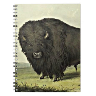arte del búfalo libro de apuntes con espiral