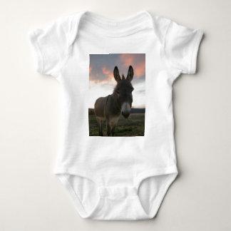 Arte del burro body para bebé