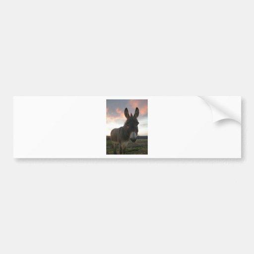 Arte del burro etiqueta de parachoque