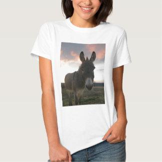 Arte del burro playeras