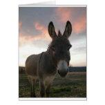 Arte del burro tarjeta de felicitación