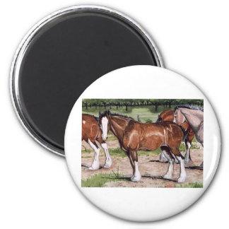 Arte del caballo de la regla de Clydesdales Imán Redondo 5 Cm