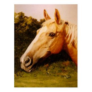 Arte del caballo del Palomino Postal