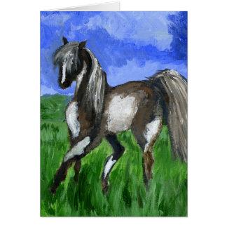 Arte del caballo del pinto del soñador tarjetón