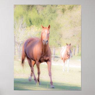 Arte del caballo póster