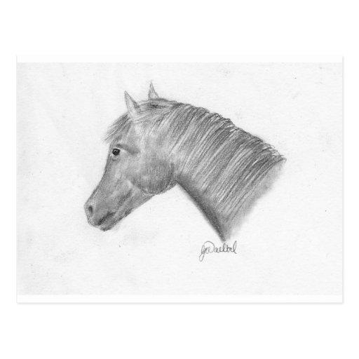 Arte del caballo tarjeta postal