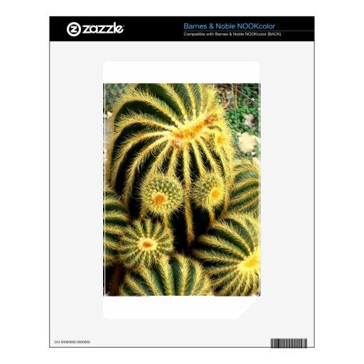 Arte del cactus