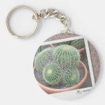 Arte del cactus llaveros