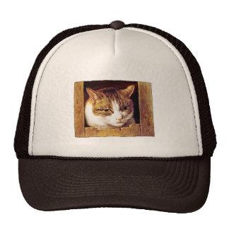 """ARTE DEL CAT DEL VINTAGE: El """"gato que mira furtiv Gorras"""