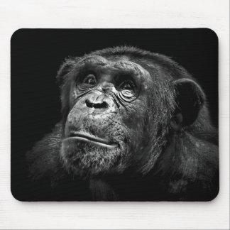 Arte del chimpancé de la protección de la fauna de alfombrillas de ratones