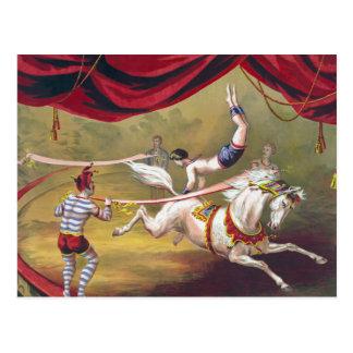 Arte del circo del vintage postal