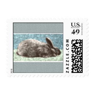 Arte del conejito sello