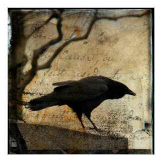 Arte del cuervo póster