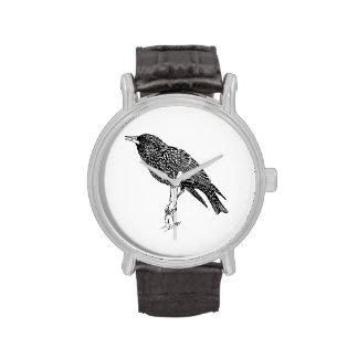 Arte del dibujo animado del pájaro de Starling