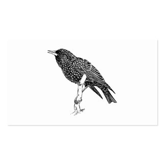 Arte del dibujo animado del pájaro de Starling Tarjetas De Visita