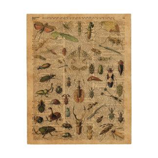 Arte del diccionario del ejemplo del vintage de cuadros de madera