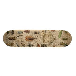 Arte del diccionario del ejemplo del vintage de tabla de patinar