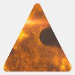 Arte del espacio de la estrella de Exoplanet de la Pegatinas Triangulo