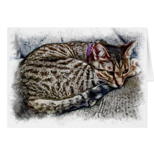 Arte del gato de Yuki Felicitacion