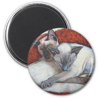 Arte del gato siamés el dormir iman de frigorífico