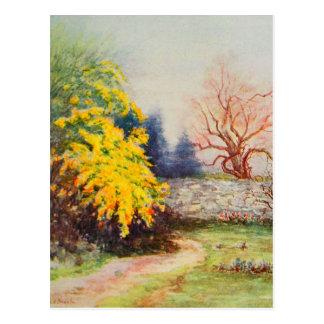 Arte del jardín del vintage - Steele, delegado de Postales