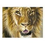 Arte del león tarjetas postales