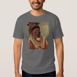 Arte del nativo americano de Catlin Polera